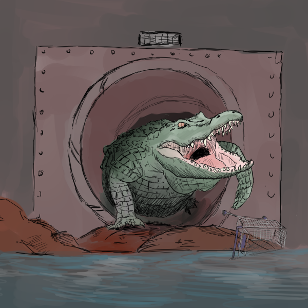 alligator-1980