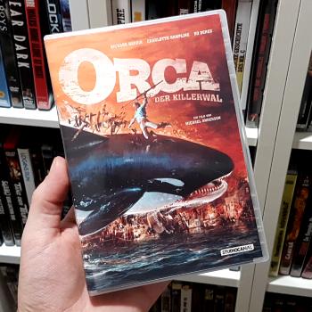 orca-1977